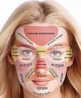 зоны нанесения масла эксиол лавилайтс на лице
