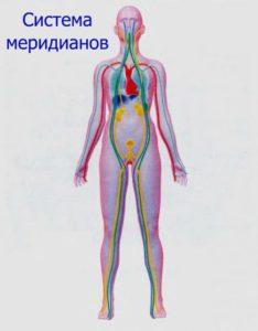 Ролик хорошего качества урок женской анатомии в живую