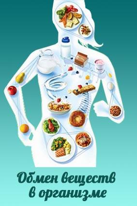 Пограничная вода и питание PM-international регулируют метаболизм клеток.